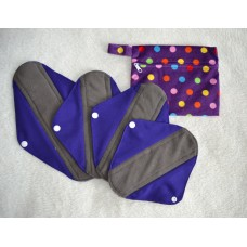 Bamboo Charcoal Sanitary Pad Starter Set - Purple